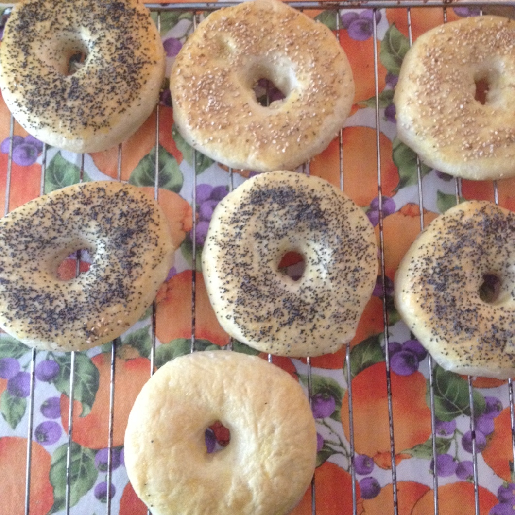 bagels semi di papavero semi di sesamo