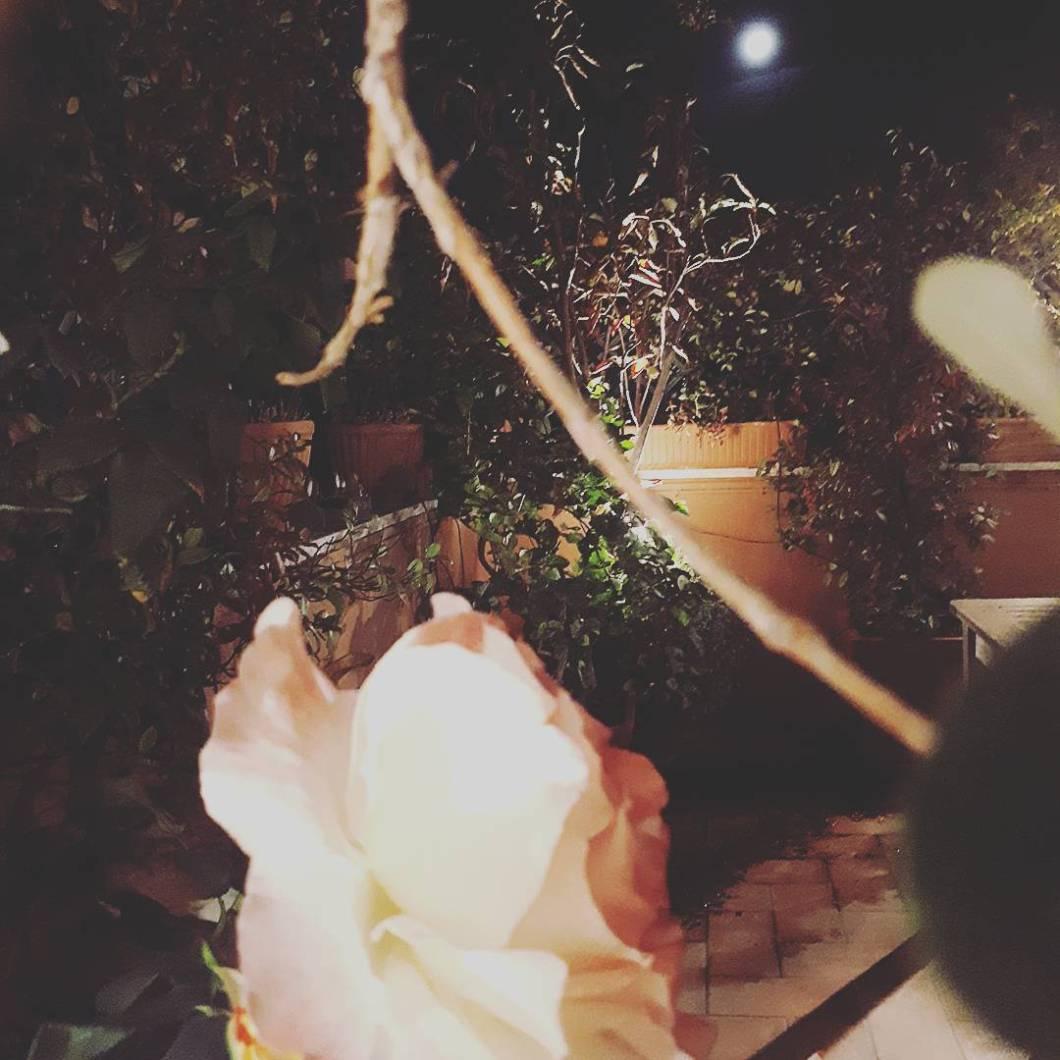 diario di settembre - balcone fiorito